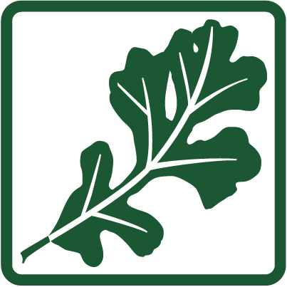 logo with leaf vertical-square