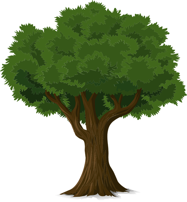 Tree for Support Page - medium