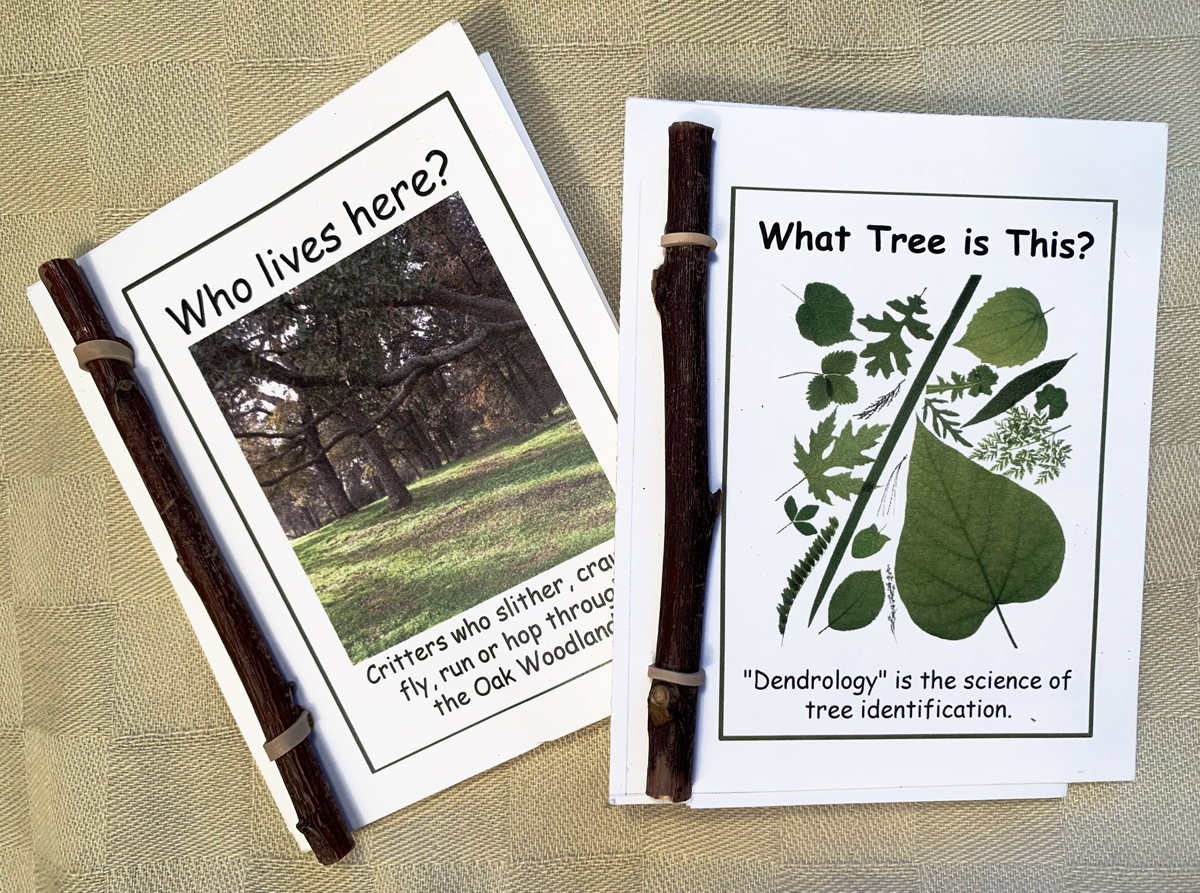 Critter and Tree booklets that kids can put together themselves