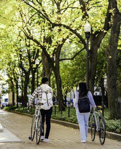 Couple walking bikes under trees